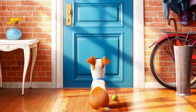 recenzja-sekretne-zycie-zwierzakow-domowych-czyli-opowiesc-o-przyjazni-15