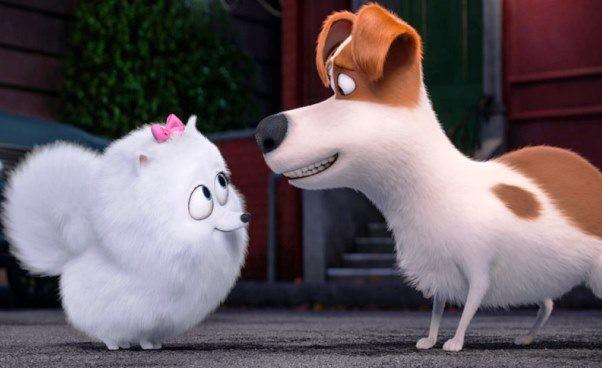 recenzja-sekretne-zycie-zwierzakow-domowych-czyli-opowiesc-o-przyjazni-17